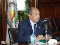 مصر :إحياء مشروع البتلو وملء الفراغات ساهم في تقليل فجوة البروتين الحيواني