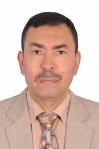 مصر والجزائر في ليبيا.. الصوت والصدى