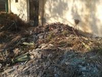 أهالي بسيون يستغيثون ... أنقذوا موتانا من الإهمال وتراكم القمامة بالمقابر