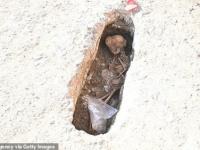 اكتشاف رفات 4500 جثة في مقبرة إسلامية في إسبانيا