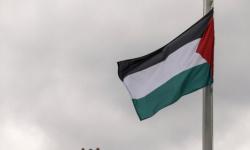 """الخارجية الفلسطينية تدعو """"الجنائية الدولية"""" للإعلان عن فتح تحقيق في """"الجرائم الإسرائيلية"""""""