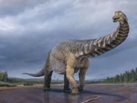 طوله بحجم ملعب كرة.. اكتشاف بقايا أكبر ديناصور في العالم بأستراليا
