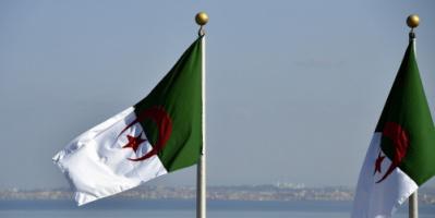الجزائر.. السجن المؤقت لـ47 مشتبها بتهمة التورط في حرائق الغابات